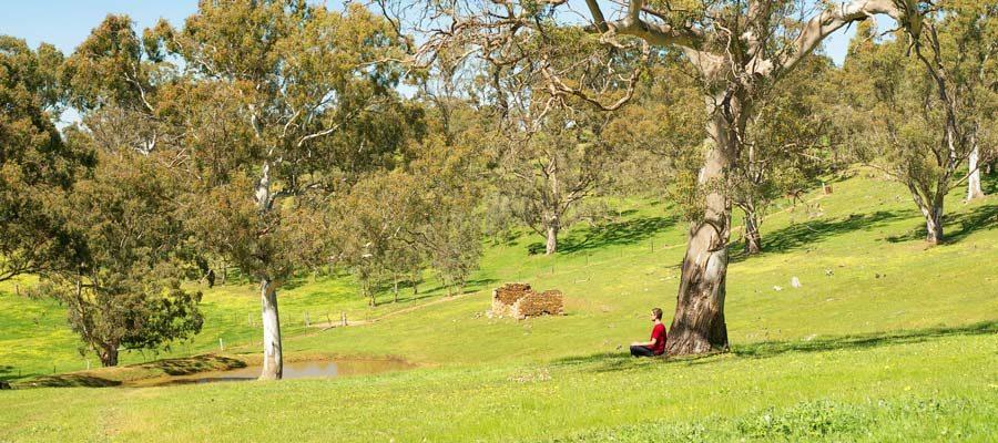 Tara Hills meditation retreat